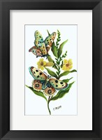 Framed Butterfly on Yellow Floral