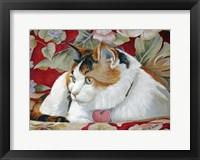 Framed Callie the Calico Cat