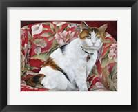 Framed Callie
