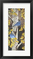 Framed Stellar Jay with Leaves of Gold