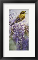 Framed Yellow Bird in Wisteria
