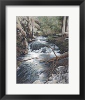 Framed Clear Creek
