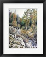 Framed Mountain Rapids