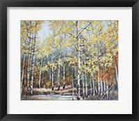 Framed New Aspen Grove