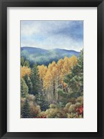 Framed Colors of Fall