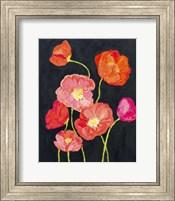 Framed Sunshine Poppies