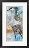 Framed Sandhill Cranes I