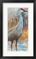 Framed Sandhill Cranes III