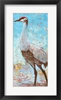 Framed Sandhill Cranes IV