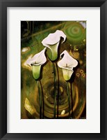 Framed Arum Lilies