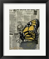 Framed Butterfly On My Newspaper