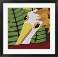 Framed Peeping Pelican