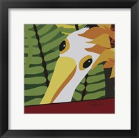 Framed Peeping Pelican