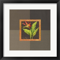 Framed Tropical Treasures II