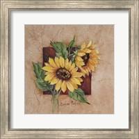 Framed Sunflower Square