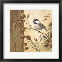 Framed Chickadee Square II