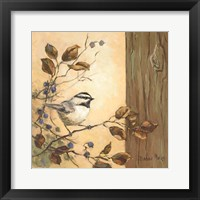 Framed Chickadee Square I