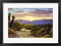 Framed Desert Splendour