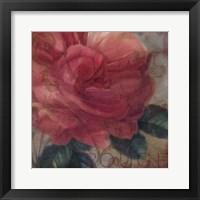 Framed Coleurs Rouge