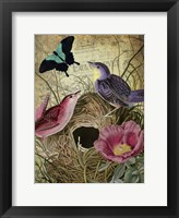 Framed Petals and Wings IV