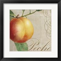 Framed Fruits Classique I