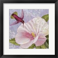 Framed Humming Hibiscus II