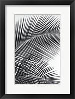 Framed Tropical Fan