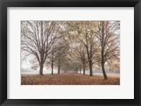 Framed Autumn's Peace