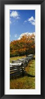 Framed Fence in a Park, Blue Ridge Parkway, Virginia