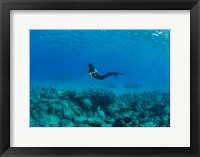 Framed View of Mermaid Swimming Undersea, Hawaii
