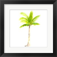 Framed Tropical Icons Palm Tree