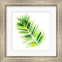 Framed Tropical Icons Palm Frond