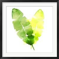 Framed Tropical Icons Banana Leaf