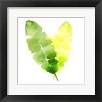 Framed Tropical Icons Banana Leaf