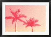 Framed Palm Trees in Pink
