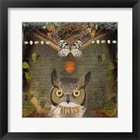 Framed Deep Forest Owl