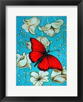 Framed Aqua-Red Butterfly