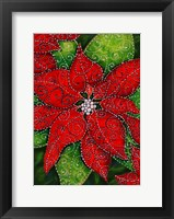 Framed Sparkling Poinsettia