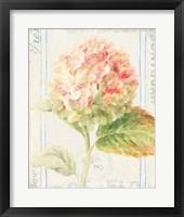 Framed Floursack Florals VI
