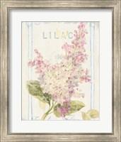 Framed Floursack Florals V