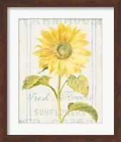 Framed Floursack Florals II