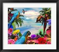 Framed Macaw Island