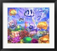 Framed Ocean's Little Wonders