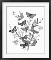 Framed Butterfly Bouquet I Linen BW I