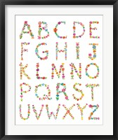 Framed Floral Alphabet