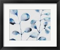 Framed Blue Branches
