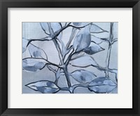 Framed Grey Branches