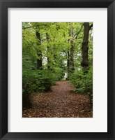 Framed Wood 3