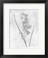 Framed Monochrome Floral Cleaner 3