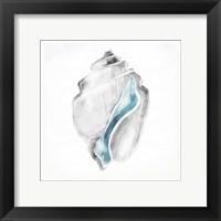 Framed Soft Shell